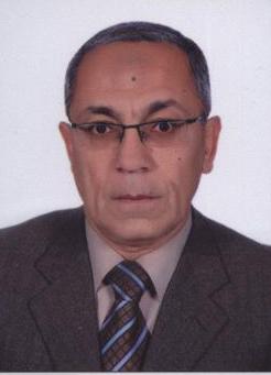 Baher A. M. Effat